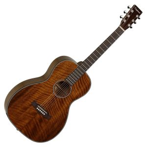 Tanglewood TW40 PD Guitar Image