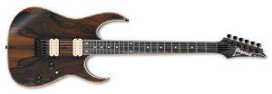RG Series Guitar Example Image