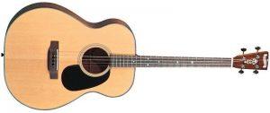 tenor guitar image