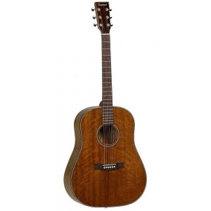 Tanglewood TW40 SDD Acoustic Guitar Image