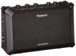 Roland Portable Acoustic Amp
